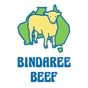 Hasties Top Taste Meats - Wollongong Butcher - Bindaree Beef Logo
